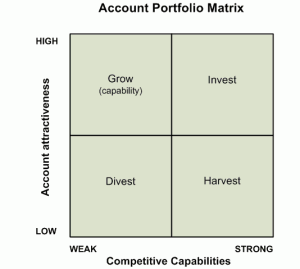 Customer Account Portfolio Analysis